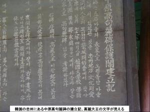 第119弾  のむけはえぐすり;忠州の中原高句麗碑の保護閣の建立記
